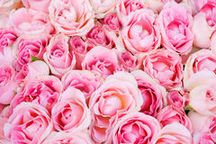 Wedding bridal roses from above of. Floral backgrounds series Royalty Free Stock Images