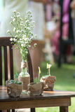 Wedding, Bridal shower flowers. An Outdoor Bridal Shower Background Filled with Love and Laughter Royalty Free Stock Photo