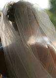 Wedding Bridal Veil. The bride waits patiently for the wedding ceremony to start. Taken from the back, you can see the veil and her lovely outline Royalty Free Stock Images