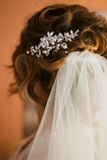 Wedding bridal veil. Wedding bridal dress white veil Stock Images