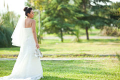 Wedding bride Stock Images