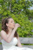Wedding bride Royalty Free Stock Photos