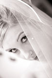 Wedding bride face half hide veil Stock Photography