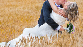 bride and groom kiss Royalty Free Stock Photography