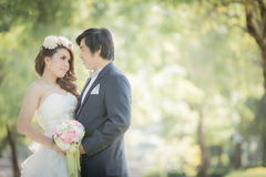 Wedding. Bride and groom image I'm in love Stock Images