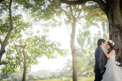 Wedding. Bride and groom image I'm in love Stock Photography