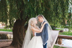 Wedding .Bride and Groom, Kissing at a Beautiful park on the wedding day., Romantic Married Couple .Wedding couple outdoors is hug Royalty Free Stock Images