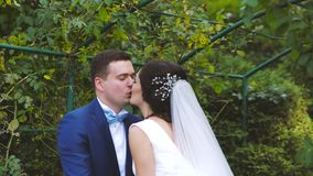 Wedding Bride and Groom Kissing on the Walk stock video footage