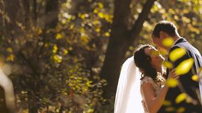 Wedding Bride and Groom Kissing on the Walk. Happy emotions stock video footage