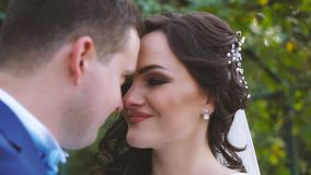 Wedding Bride and Groom Kissing on the Walk. Happy emotions stock video