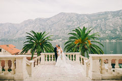 Wedding bride and groom in picturesque scenery Stock Photos