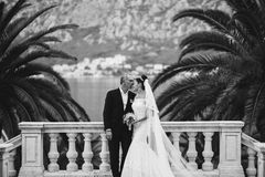 Wedding bride and groom in picturesque scenery monochrome. Fashion wedding bride with long veil and groom in picturesque scenery in Montenegro in monochrome Royalty Free Stock Photo