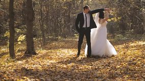 Wedding Bride And Groom Walk in a Autumn Forest. Happy moments stock video footage