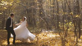 Wedding Bride And Groom Walk in a Autumn Forest. Happy moments. Slow motion stock footage