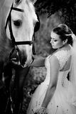 Wedding. Bride with white horse. Stock Photo