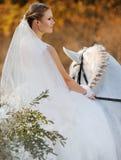 Wedding. Bride with white horse. Stock Photos
