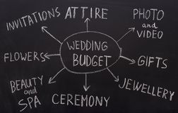 Wedding budget planning graph with all spendings
