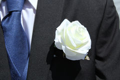 Wedding buttonhole Stock Images