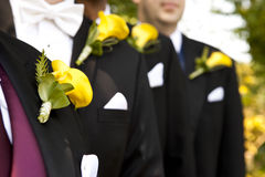 Wedding buttonholes. Four men lined up and dressed with a tuxedo at a wedding showing up their yellow buttonholes Royalty Free Stock Photography