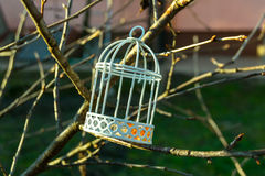 Wedding cage on some branches. In a sunny day stock image