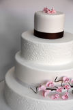 Wedding cake. White wedding cake with brown band and pink icing flowers Royalty Free Stock Photo
