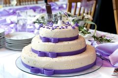 Wedding cake. Beautiful purple wedding cake on the table Royalty Free Stock Image