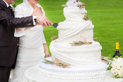 Bride and groom cut a wedding cake royalty free stock photos