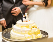 Wedding cake. A bride and a groom is cutting their wedding cake Stock Images