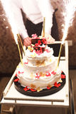 Wedding cake with butterflies and lighted fireworks Royalty Free Stock Photos