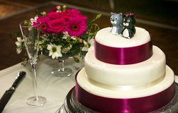 Wedding cake with cat cake toppers Royalty Free Stock Photos