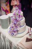 Wedding cake. Wedding ceremony. Decor trends Stock Images