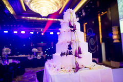 Wedding Cake. Colorful lights in the background five cakes Stock Images