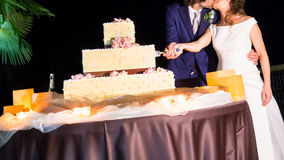 Wedding cake cut. Bride and groom cut their wedding cake stock images