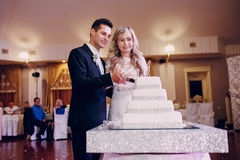 Wedding cake cutting Royalty Free Stock Image