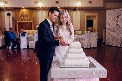 Wedding cake cutting Stock Image