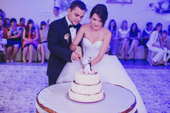 Wedding cake cutting Royalty Free Stock Images