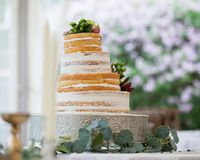 Crooked Wedding Cake Royalty Free Stock Images