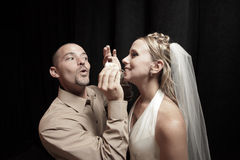 Wedding cake feeding Stock Images