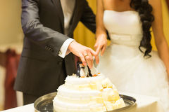 Wedding cake with figurines of penguins Royalty Free Stock Photo