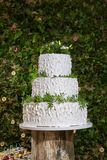 Wedding Cake in forest Stock Photography
