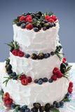 Wedding cake with fresh berries. Birthday or wedding cake with fresh berries stock images