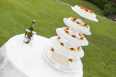 Wedding cake with fruit royalty free stock photo