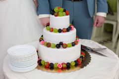 Wedding cake with fruit. The couple cut the wedding cake Stock Photography