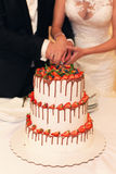 Wedding cake with fruit. The couple cut the wedding cake Stock Photos