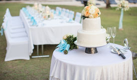 Wedding cake. On the table royalty free stock photos