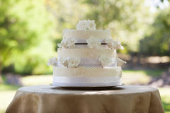 Wedding cake on table at park Stock Images