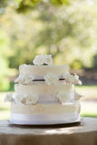 Wedding cake on table at park Royalty Free Stock Image