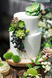 Wedding cake. Tiered wedding cakes at outdoor wedding party Stock Image