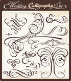 Wedding Calligraphy Set. Wedding calligraphy vector set with exquisite ornamental and page decoration designs Royalty Free Stock Image