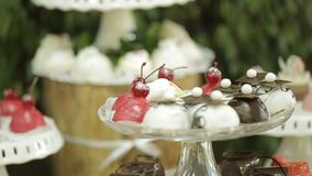 Wedding candy bar outdoor. Close-up shot of the tasty cupcakes on the dessert stand. No people. stock footage